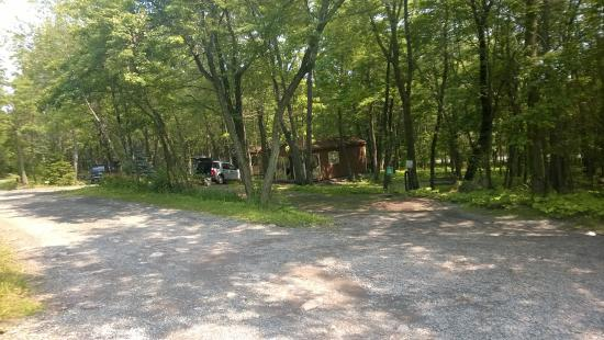 Peaceful Woodlands Family Campground Reviews Blakeslee Pa
