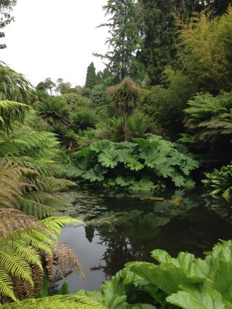 The Lost Gardens of Heligan : One tiny part of these beautiful gardens