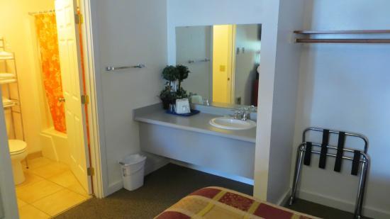Motel West Bend: Blume am Waschtisch