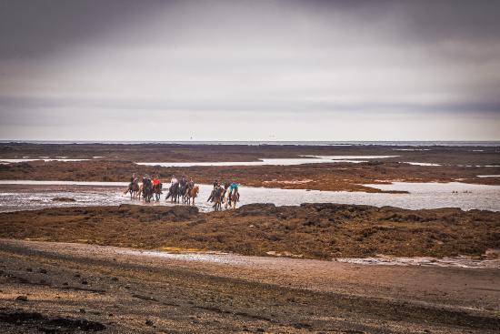 Eyrarbakki, Island: getlstd_property_photo