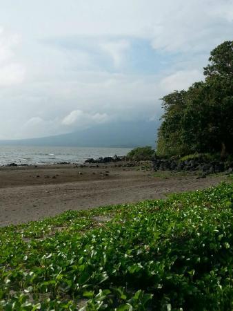 Finca San Juan de la Isla: The grounds of San Juan de la Isla - Lake Nicaragua