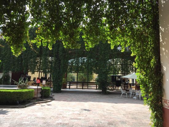 Picture Of Hacienda Jurica By Brisas