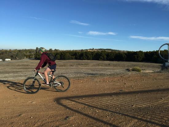 Stromlo Forest Park: On the MTB trail near the car park.