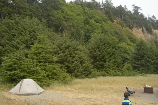 Gold Bluffs Beach Campground: Campsite (not beach front)