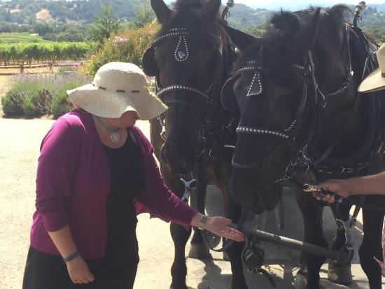 The Wine Carriage: photo2.jpg