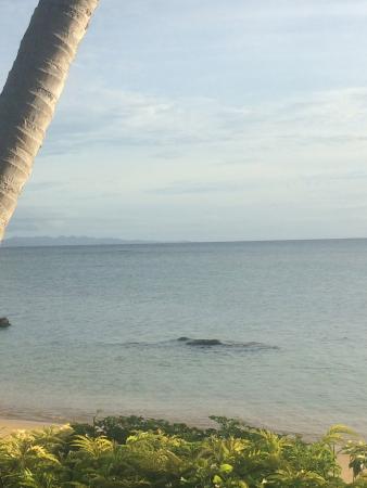 Coconut Grove Beachfront Cottages: Beach