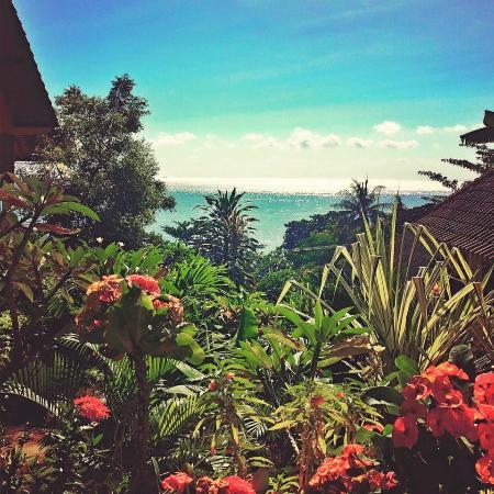 Sinar Bali 1 Bungalows : panorama dalla camera