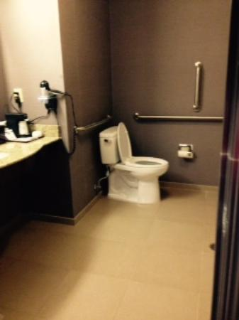 raised toilet with great grab bars and space for wc transfers in ...