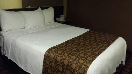 Microtel Inn & Suites by Wyndham Kalamazoo: MicroInn Kalamazoo, Michigan