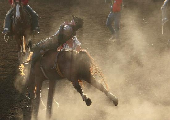 Saint Paul, Oregón: ST Paul Rodeo
