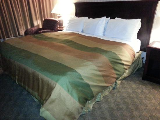 Ramada Limited Vancouver Airport: Queen sized bed