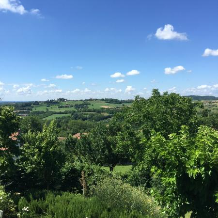 Cascina Rosetta: View from Senape Room