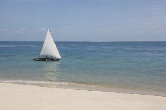 Dhow Inn: Trips and excursions