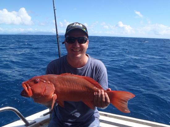 Cairns Reef Fishing: Thanks Cairns Fishing Charters
