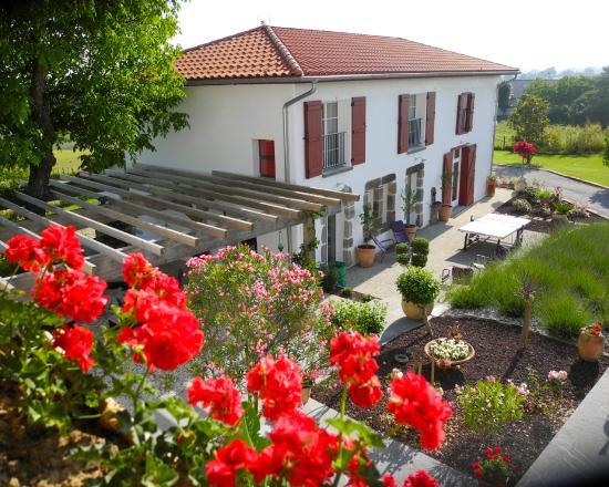 Maison d'Hotes Saint-Cricq