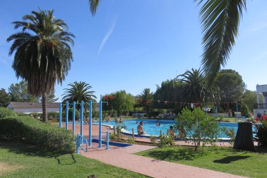 Vista da piscina foto de elxadai parque elvas tripadvisor for Piscina elvas