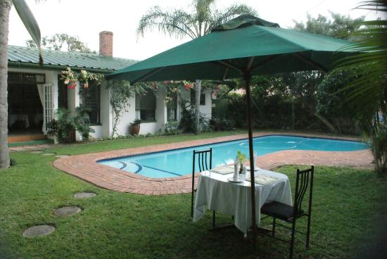 Igwalagwala Guest House : Crystal clear swimming pool