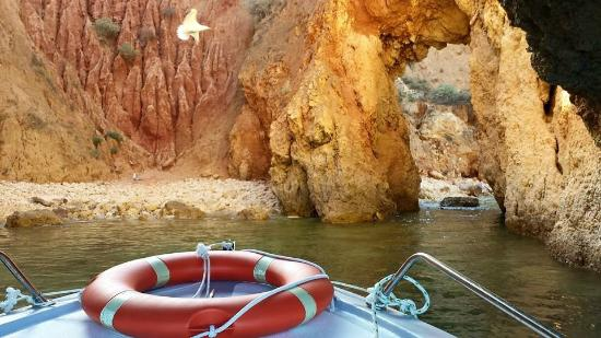 Algarve Discovery: boat trip caves