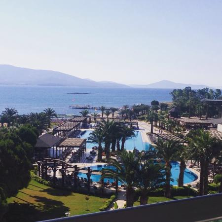 Venosa Beach Resort & Spa: Lush Hotel