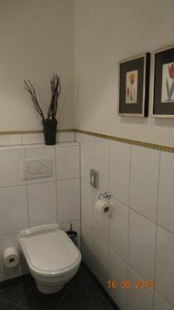 Hotel Herrnschloesschen : parte baño 1
