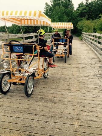 Tatamagouche, Canada: Come ride our buggies & picnic along a gorgeous seaside stretch of the Trans-Canada trail  &/or