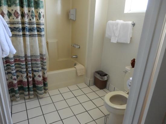 Barewood Inn & Suites: Dusch WC