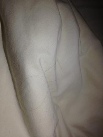 Quality Inn Hall of Fame: Hair in the bed (2 times)