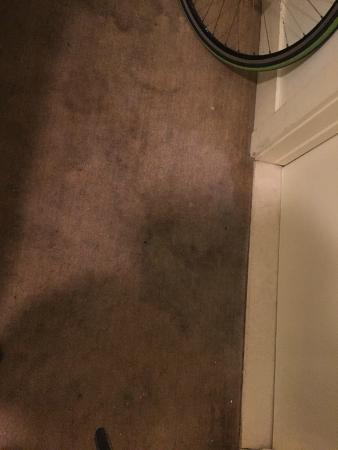 Cadillac Hotel: Carpet stains and room reeked of mold