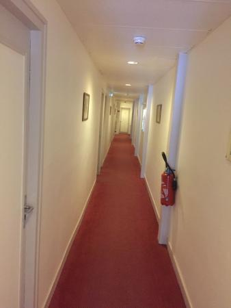 Hotel Richaud : At the picture it's look clean, but it was GREY and Dark...