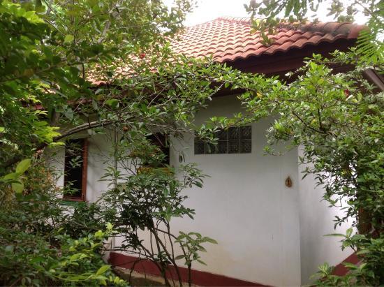 Phawana Garden