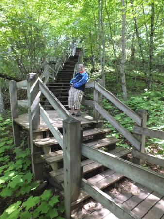 Sunshine Motel and Cabins: A mighty staircase to conquer at Porcupine Mts State Park