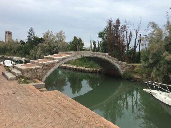 Locanda La Cipriana: beautiful approach to the property