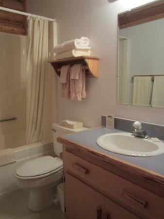 North Forty Resort: Bathroom