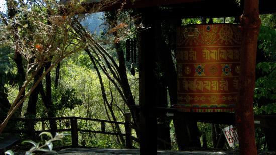 Land of Medicine Buddha: Prayer Wheel
