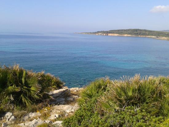 Hostal de l'Alguer: Nearest beach