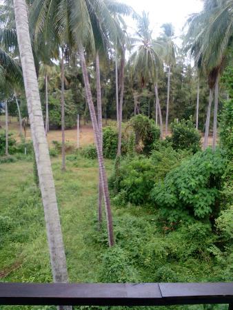Samui Natien Village