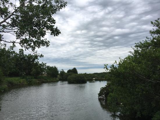 Otterham, UK: photo0.jpg