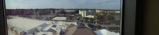 Delta Hotels by Marriott Chesapeake: view from room