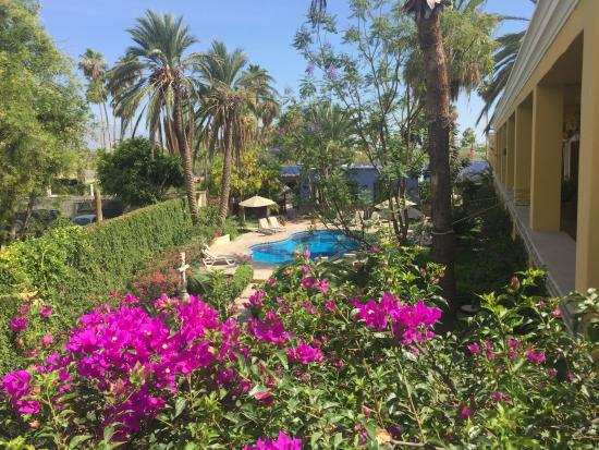 El Encanto Inn: View from MEXICANA SUITE