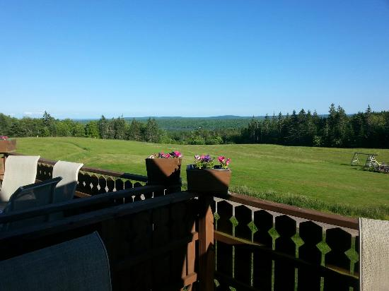 Hunter's Mountain Chalets: Great spot for kids and dogs