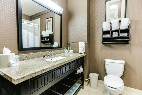 Holiday Inn Express Hotel & Suites Huntsville: King Suite Bathroom