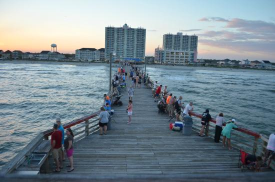 Views picture of cherry grove pier north myrtle beach for Cherry grove pier fishing report