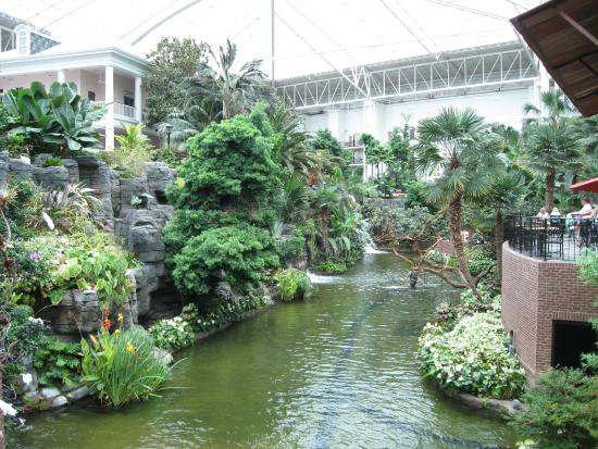 One of the waterfall pool things inside picture of gaylord opryland resort convention for Gaylord opryland hotel swimming pool