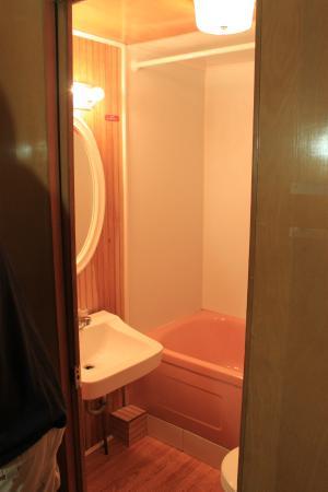 Robbins Motel : Small bathroom but clean!