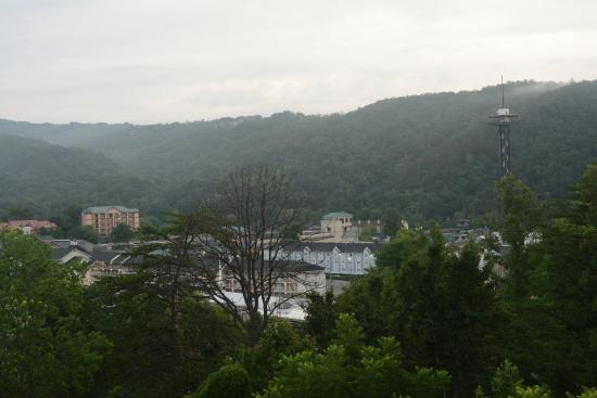 Laurel Inn Condominiums: Morning view from terrace