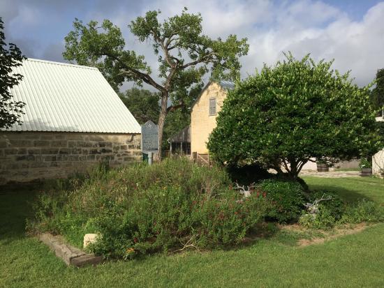 Palo Alto Creek Farm: View of barn and Itz house