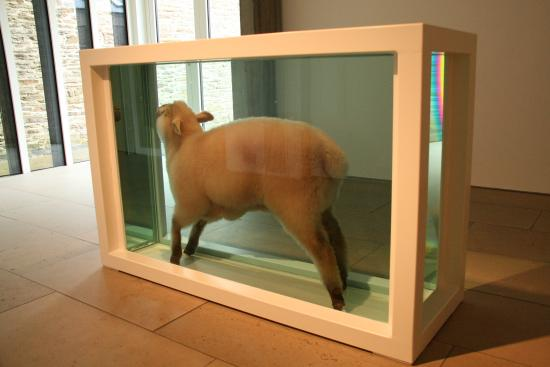 Pier Arts Centre: Damien Hirst sheep