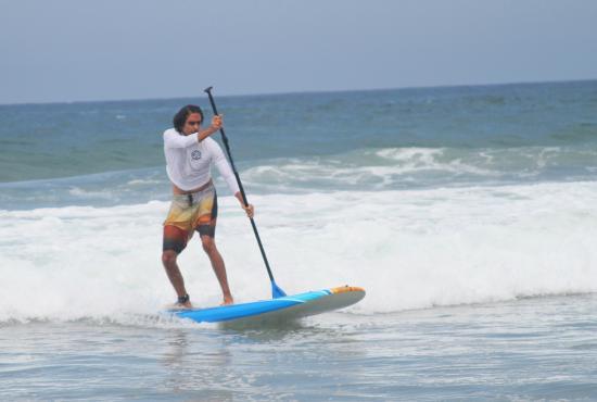 Razzle S Board Als Paddleboarding In Manhattan Beach