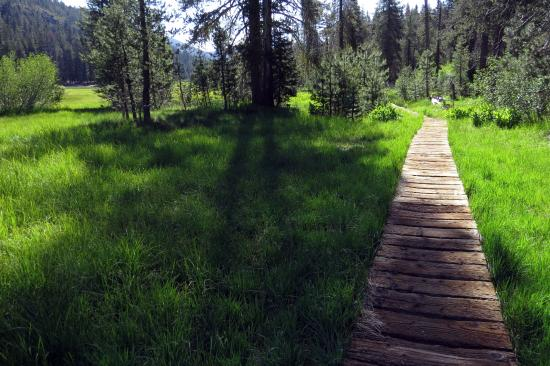 Drakesbad Guest Ranch: The Meadow Walk