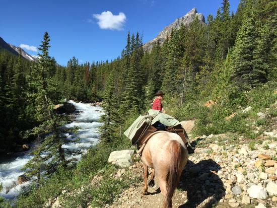 Tonquin Valley Backcountry Lodge: the treck to camp